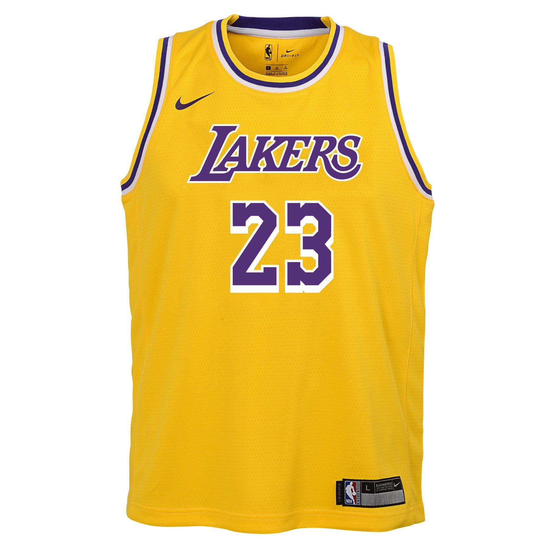 Nike Youth L. James Los Angeles Lakers Icon Swingman Jersey